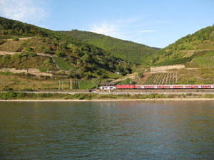 Train & vineyards glimpsed from a ferry on the Rhine