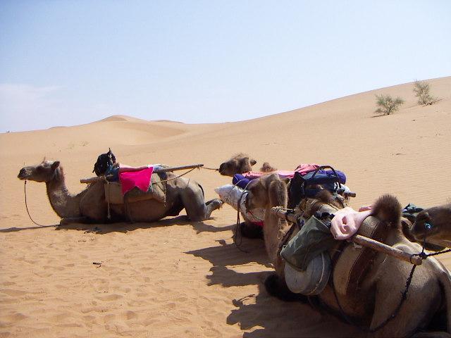 Tenegger Desert